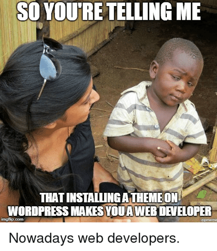 so-youre-telling-me-that-installing-a-theme-on-wordpress-37129609